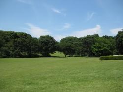 神宮の散歩 5n