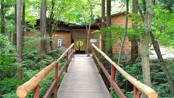の 森 場 まなか キャンプ