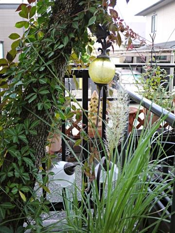 gardening338