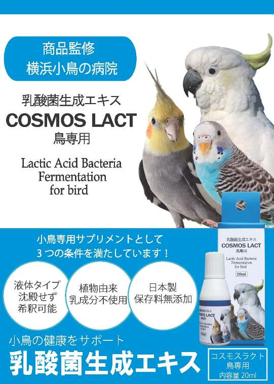 乳酸菌鳥用(一般用)