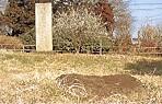 相模国分寺跡礎石