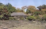 三島楽寿園渇水