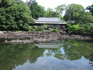 三島楽寿園満水