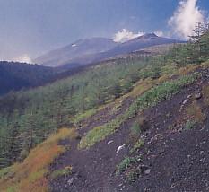 富士山須山口御殿庭下二合五勺