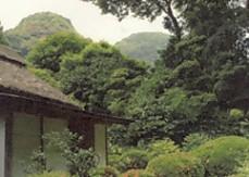 吐月峰柴屋寺庭園天柱山
