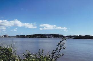 佐鳴湖西岸風景1