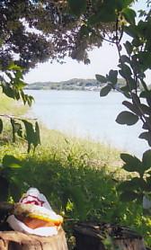 佐鳴湖エビカツコッペ