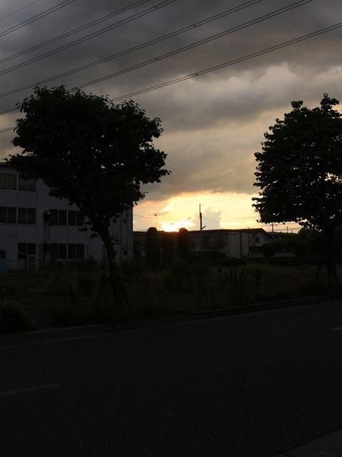 20170716_oume_0261.jpg