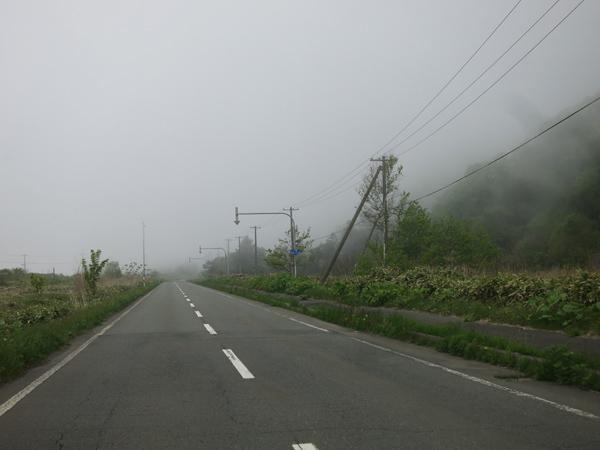 礼文 霧の道