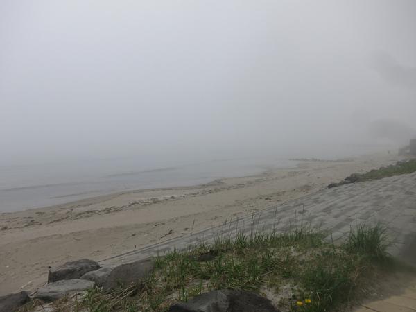 礼文華キャンプ場 海岸