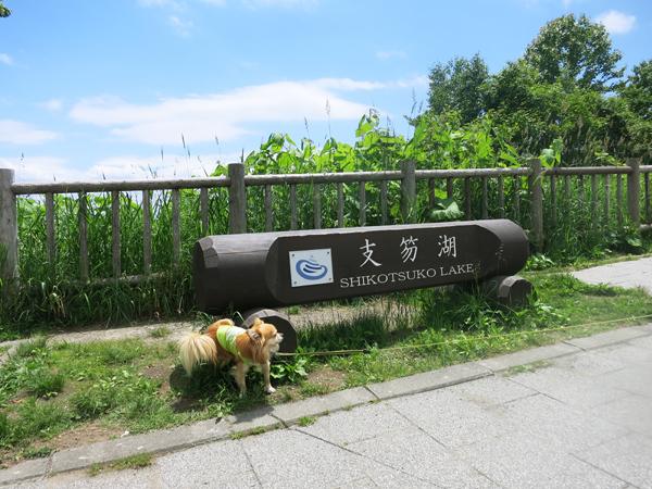 支笏湖 展望台 茶太郎