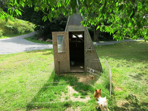 八剣山果樹 キャンプ場 アヒルの小屋
