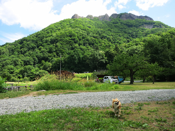 八剣山果樹 キャンプ場 八剣山 茶太郎