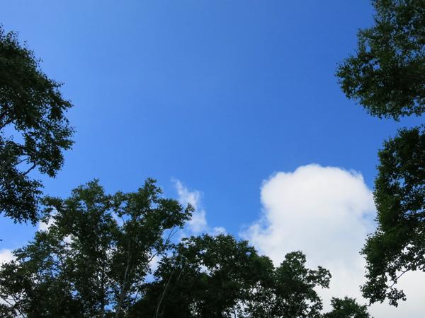 湯元温泉野営場 入道雲