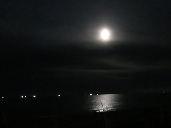 高岡オートキャンプ場  海に映る月