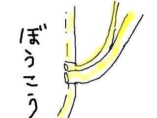 snap_bajiko_201760161325.jpg