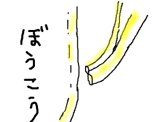 snap_bajiko_201760161557.jpg