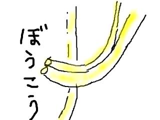 snap_bajiko_20176016175.jpg