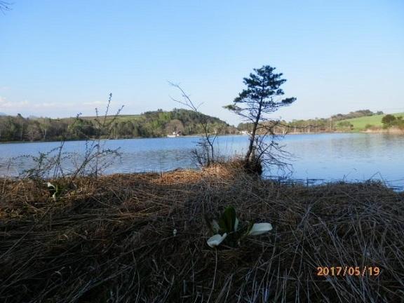 春のバラギ湖周辺