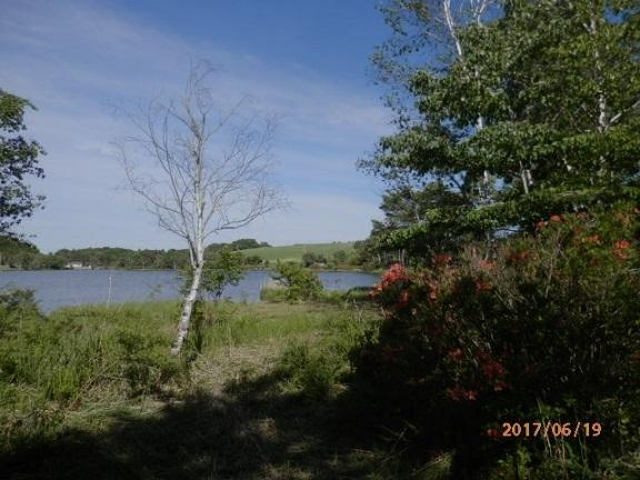 バラギ湖湖畔