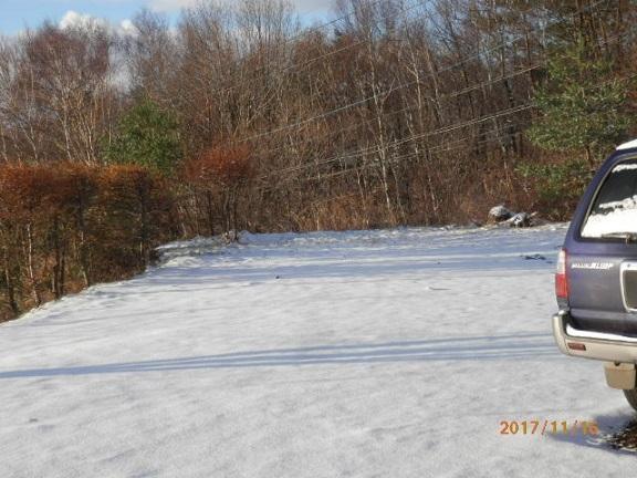 初雪です。 11/16