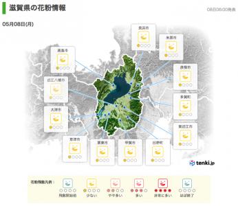 滋賀県の花粉情報(5月8日18時)