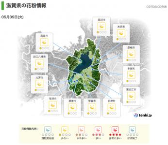滋賀県の花粉情報(5月9日6時)