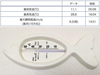 最高気温28.9度