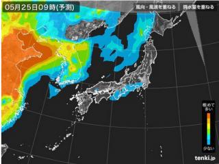 PM2.5分布予測(5月25日9時)