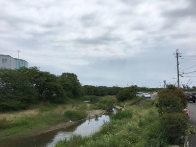 真野川のコアユ釣り