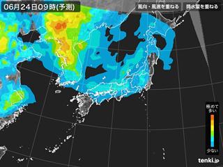 PM2.5分布予測(6月24日9時)