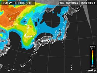 PM2.5分布予測(6月29日9時)