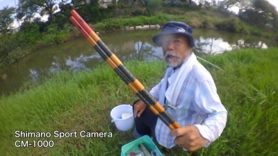 古い竹竿でモロコを釣るムービー