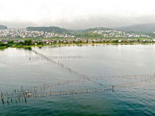 和邇中浜沖のエリ