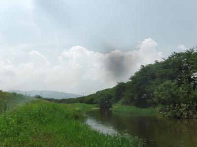 堅田付近は日に日にいい天気になって暑さがパワーアップしてます(7月13日13時頃)