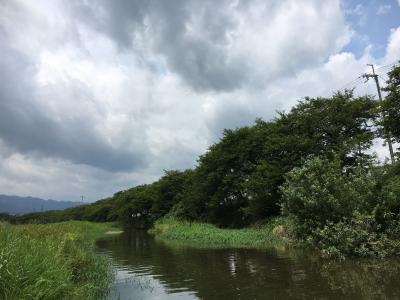 最終日のの7月17日は空模様がだいぶ夏っぽくなってました