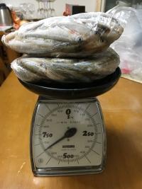 材料のスゴモロコ650g