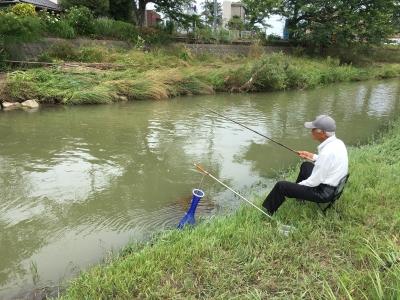 水位が釣り可能なぐらいに戻った真野川