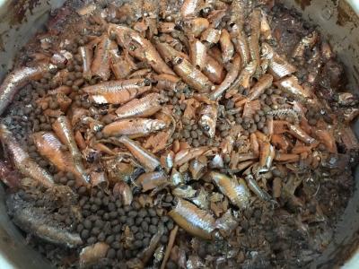 炊きあがったスゴモロコのバラバラ甘露煮(泣)