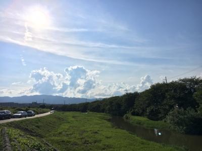 減水が続く真野川(8月19日16時頃)