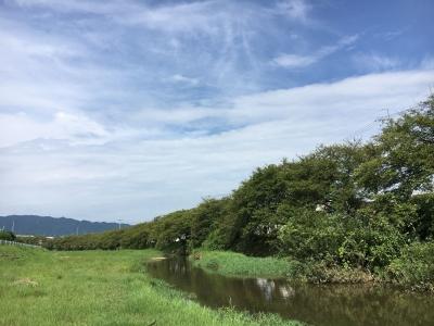 雨が上がって秋っぽい晴天になった大津市堅田付近(8月26日10時頃)