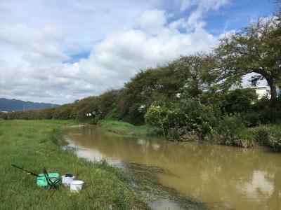 大津市堅田周辺はすっかり天気がよくなりました。泥濁りの川水が琵琶湖へどんどん流れ込んでます(9月13日9時頃)