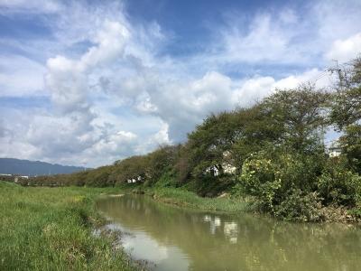 大津市堅田付近は晴れたり曇ったり。川の増水はましになってけど濁りはまだ取れてません(9月19日10時頃)