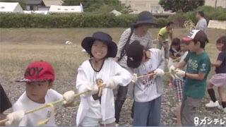 高島の体験地引き網
