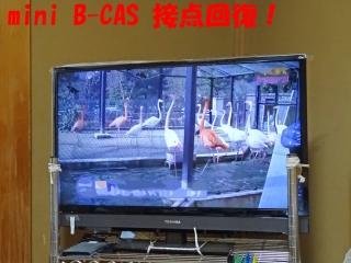 bcas_12_DSC04003a.jpg