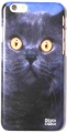British Cat phone case iphone 6 (2)