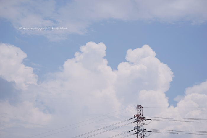 bee空20170718-2