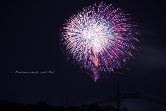 bee-八王子花火9426