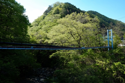 50a渡良瀬渓谷のつり橋