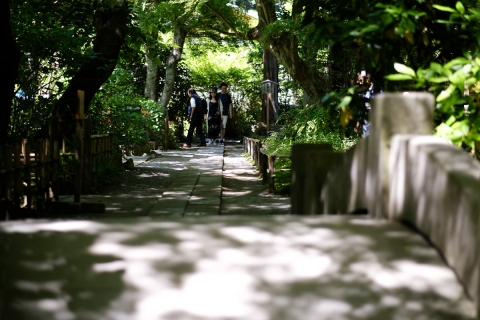 03鎌倉散歩明月院